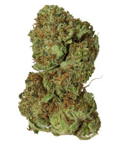 Buy white widows strain Using Zelle,Cashapp,PayPal,WesternUnion,Bitcoin, the white strain, weed strain weed