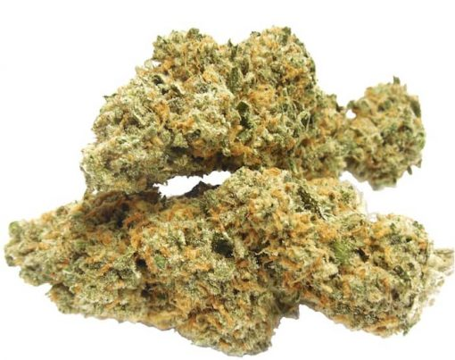 Kush Strain marijuana may exhibit deep green colas and leaves with hints of purple. Pistils (hairs) can look orange, bronze, or rust colored. Buy Kush online from medical Pre roll cigars and vape shop Dispensary