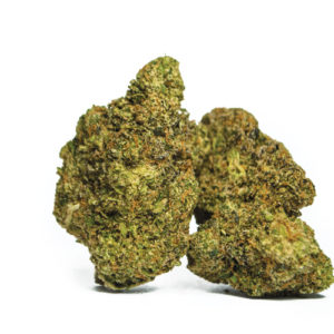 The Biscotti weed strain is a rare 80/20 indica dominant hybrid, that was created by crossing Gelato with South Florida OG. Buy biscotti weed strain at topgrade